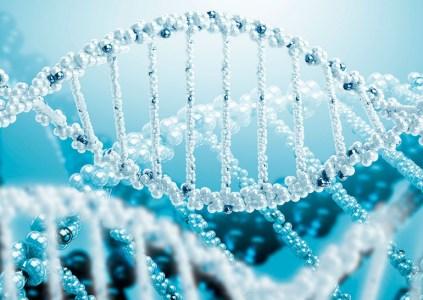Война клоническая началась: Учёные дискутировали о воссоздании ДНК «за закрытыми дверями»