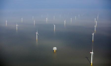Компания Trident Winds намерена построить самую большую шельфовую ветроэлектростанцию возле берегов Калифорнии