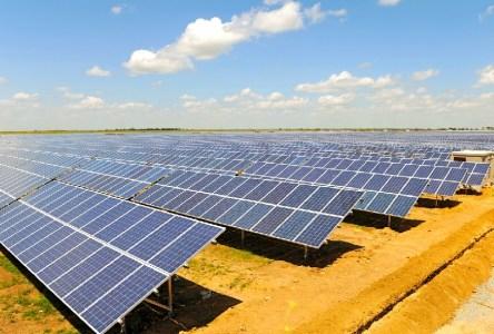 В Запорожской области на месте бывшей птицефабрики построят солнечную электростанцию мощностью 13 МВт