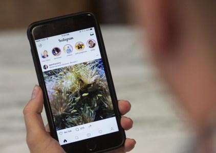 В Instagram теперь можно искать «Истории» по хэштегам и геоданным