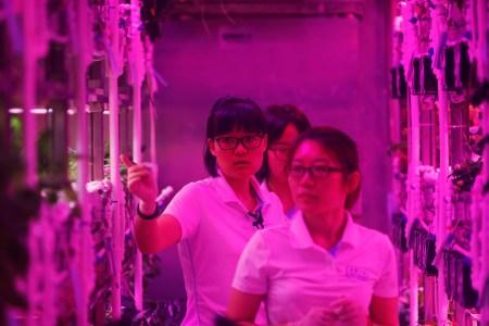 В Китае стартовал 200-дневный эксперимент по симуляции продолжительной миссии на Луне