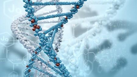 NASA: длительное пребывание в космосе вызывает генетические изменения в человеческом организме