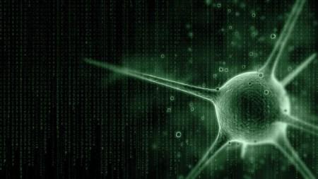 В Microsoft намерены задействовать машинное обучение для борьбы с раковыми заболеваниями