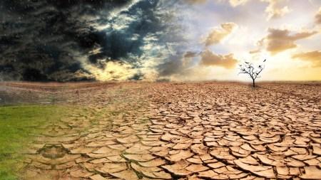Пессимистичные климатические модели, предсказывающие глобальное потепление, оказались самыми точными