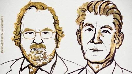 Нобелевскую премию по медицине присудили за иммунотерапию рака