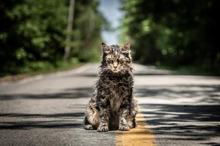 «Иногда лучше оставаться мертвым»: Первый трейлер фильма ужасов Pet Sematary / «Кладбище домашних животных» по книге Стивена Кинга