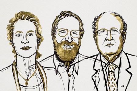 Нобелевскую премию по химии присудили за направленную эволюцию ферментов, а также фаговое отображение пептидов и антител