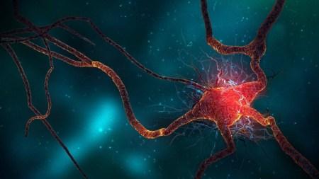 Умный браслет Nightwatch предупредит медицинский персонал о надвигающемся у пациента ночном приступе эпилепсии