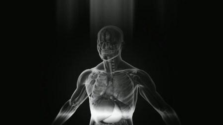 Аппарат EXPLORER создает трехмерный снимок человеческого тела всего за 20 секунд