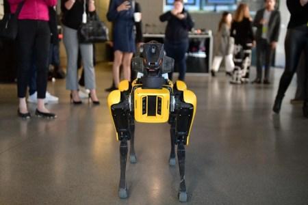 Опрос футуролога Мартина Форда: эксперты в сфере ИИ дают диаметрально противоположные прогнозы касательно будущего умных машин