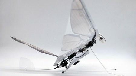 MetaFly — робонасекомое от французского авиаинженера Эдвина Ван Рюймбека