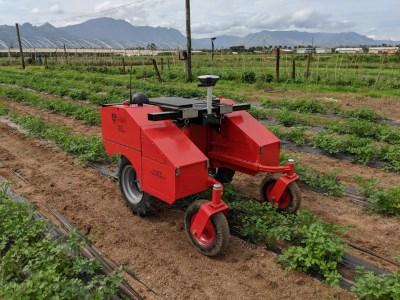 Австралийские инженеры тестируют сельскохозяйственных роботов Digital Farmhand