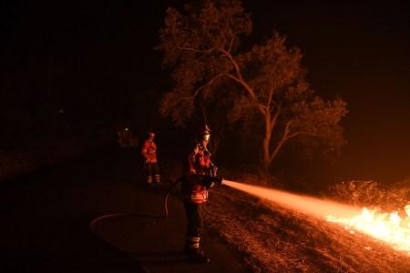 Испанские инженеры разработали ИИ-систему, которая своевременно заметит лесной пожар и вышлет к нему дрон