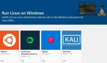 Microsoft сдержала обещание. Свежая тестовая сборка Windows 10 под номером 18917 (20H1) получила встроенное ядро Linux