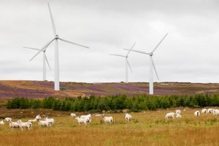 Ветроэлектростанции Шотландии вырабатывают почти вдвое больше энергии, чем потребляют все дома в стране
