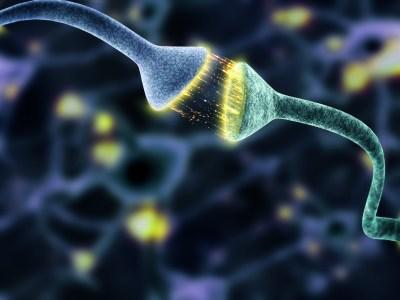 Сразу две группы европейских ученых попробуют помочь пациентам, находящимся в состоянии минимального сознания, при помощи электромагнитной нейростимуляции