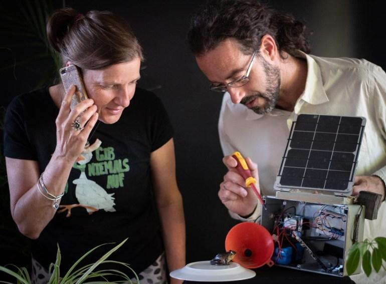 Австралийские ученые разработали устройство под названием FrogPhone, по которому они могут позвонить лягушкам, чтобы узнать, как у них дела