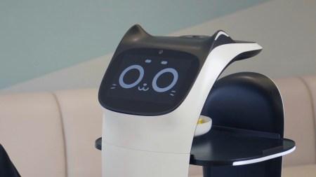 Китайская компания PuduTech разработала милого мяукающего робота-официанта
