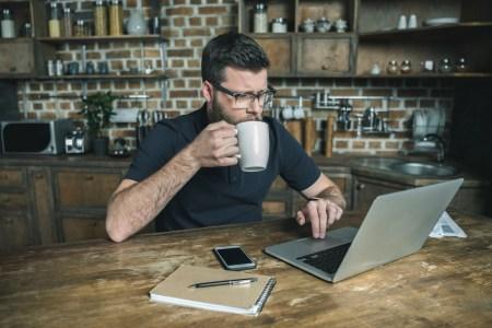 Freelancehunt: Больше всего среди заказчиков фрилансеров востребованы программисты, дизайнеры и копирайтеры, при этом подавляющее большинство работает с уже знакомыми исполнителями [инфографика]