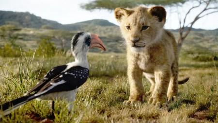 Disney начал работу над сиквелом «Короля льва», режиссером назначили Барри Дженкинса