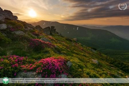 10 найкращих знімків фотоконкурсу «Вікі любить Землю» 2020 року від України