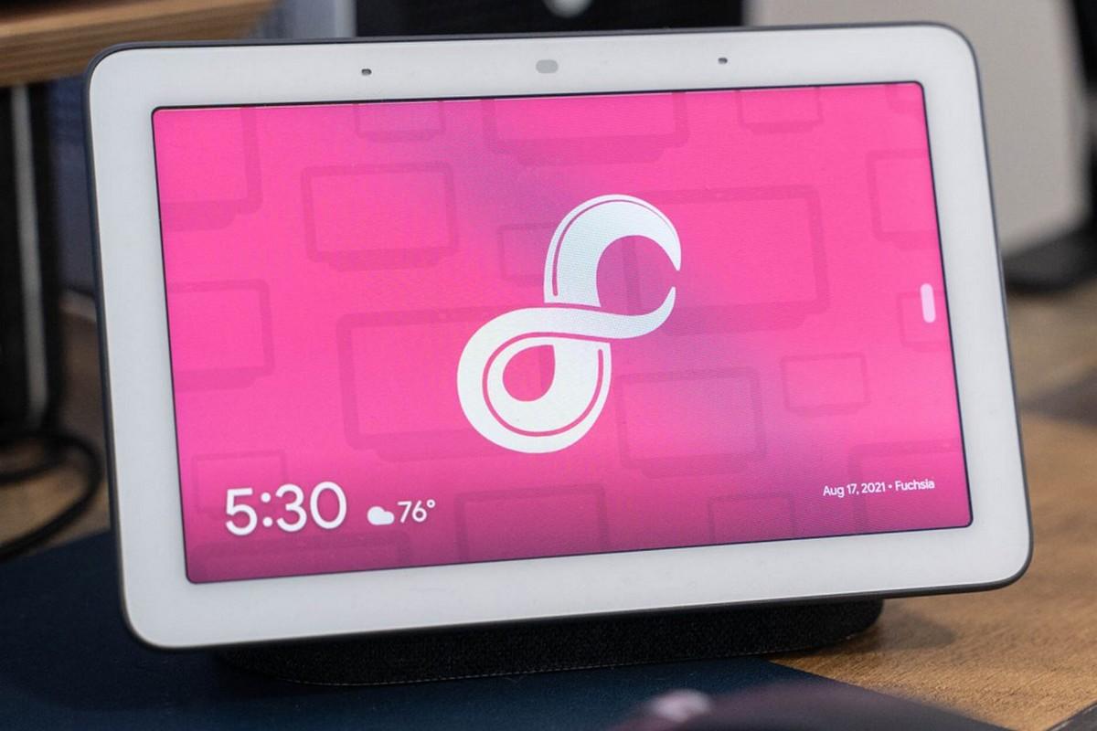 Google выпустила операционную систему Fuchsia — релизная версия стала доступна для всех умных экранов Nest Hub первого поколения - ITC.ua