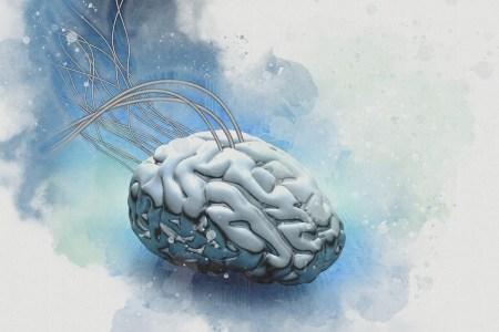 Samsung надеется перенести карту нейронных соединений мозга в нейроморфные чипы методом… копирования-вставки