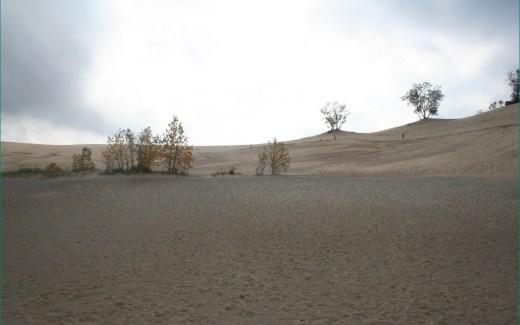 Indiana: Porter – Indiana Dunes National Park