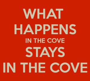 what happens in the cove