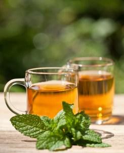 herbal peppermint tea closeup macro outdoor summer geen leaves