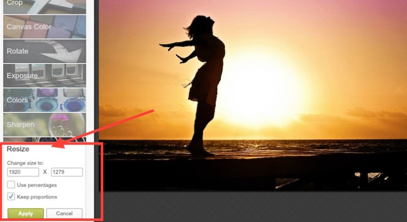 How to resize an image with Pickmonkey