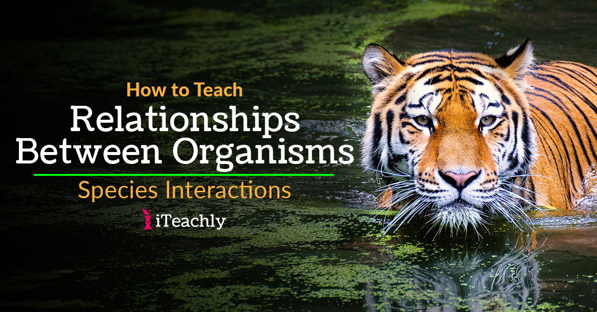Species Interactions - Relationships Between Organisms