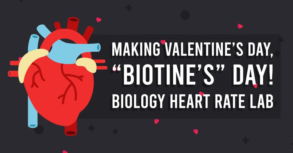 Valentine's Day Biology Lab - Heart Rate Lab, Target Heart Rate Zones Beats Per Minute, biology valentines day card, valentine's day biology, valentine's day biology jokes, valentine's day biology activity, valentine's day biology worksheet, Making Valentine's Day Biotine's Day