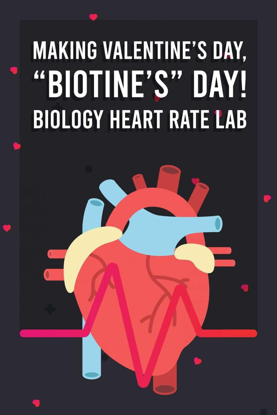 Target Heart Rate Zones Beats Per Minute, biology valentines day card, valentine's day biology, valentine's day biology jokes, valentine's day biology activity, valentine's day biology worksheet, Making Valentine's Day Biotine's Day