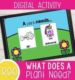 What Plants Need to Grow Kindergarten Digital Science Activity - I Teach Too [ 1000 x 1000 Pixel ]
