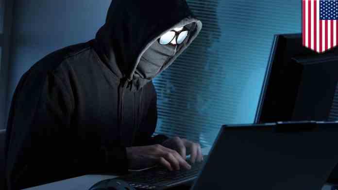 Phishing   Social Engineering