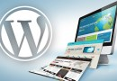 How to transfer WordPress manually