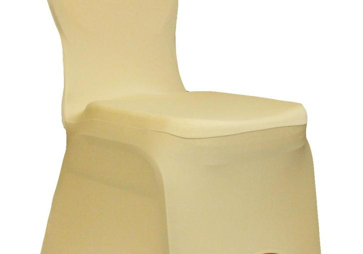 99 Cent Chair Covers