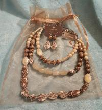 Chico's NWT Chico.s necklace & earrings
