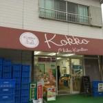 千葉君津の素敵なアイスクリーム屋さんKokkoは穴場です!