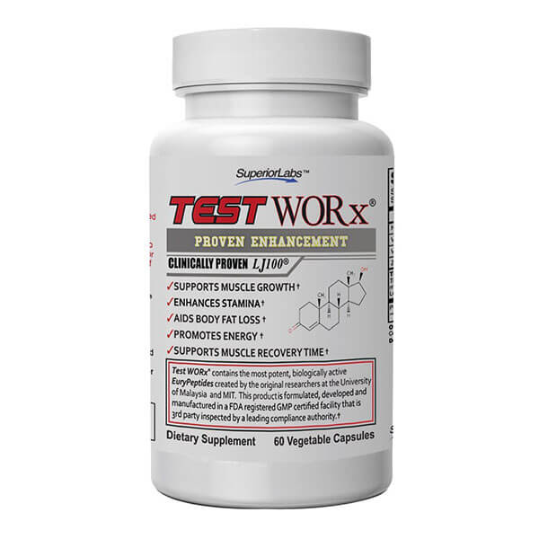Test Worx Review