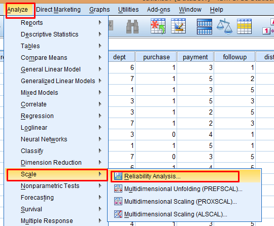 Reliability SPSS menu