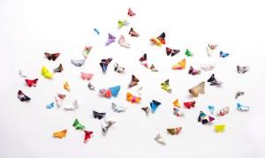 mariposas gestalt