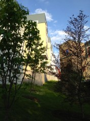 Collegetown_Terrace24