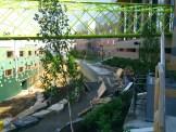 Collegetown_Terrace-Ithaca-06151412