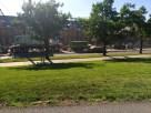 Goldwin-Klarman-Hall-Cornell-Ithaca-062414-209