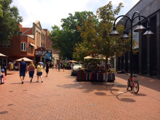 Charlottesville-VA-downtown-IthacaBuilds-08091408