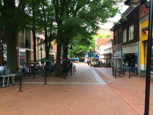 Charlottesville-VA-downtown-IthacaBuilds-08091429