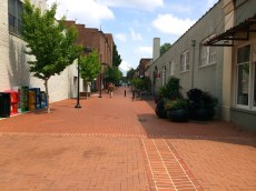 Charlottesville-VA-downtown-IthacaBuilds-08091435