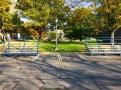 Sesquicentennial-Grove-Cornell-10-17-1405
